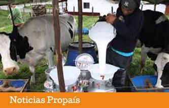 ipiales-sector-lacteo
