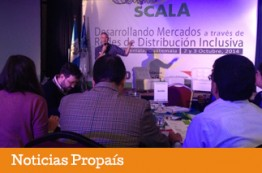 Propaís entidad invitada por el BID-FOMIN a Taller de Entrenamiento en Guatemala