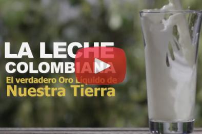La Leche Colombiana - El verdadero oro líquido de nuestra tierra