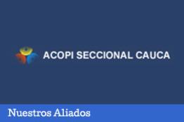 Expocauca 2015
