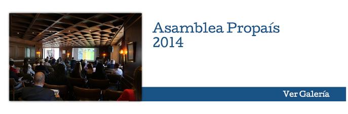 Asamblea Propaís - 2014